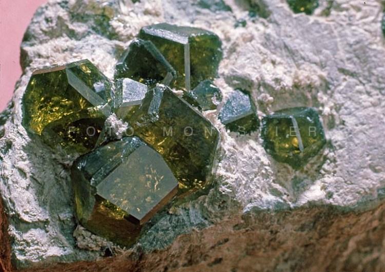 Granato – Cristalli fino a cm. 1, Val Malenco, Sondrio. Collezione Giorgetta.