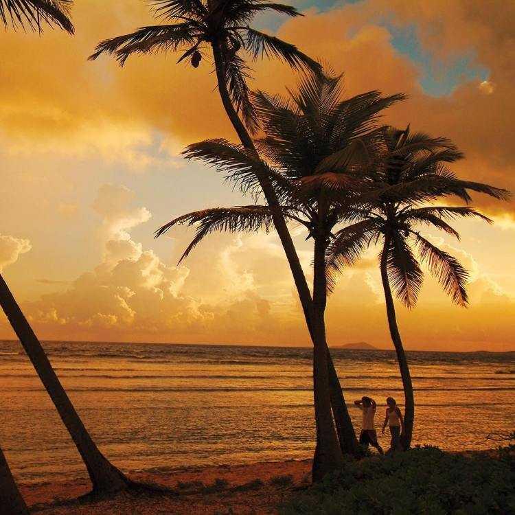 isole vergini 2017 promozione centenario (6)