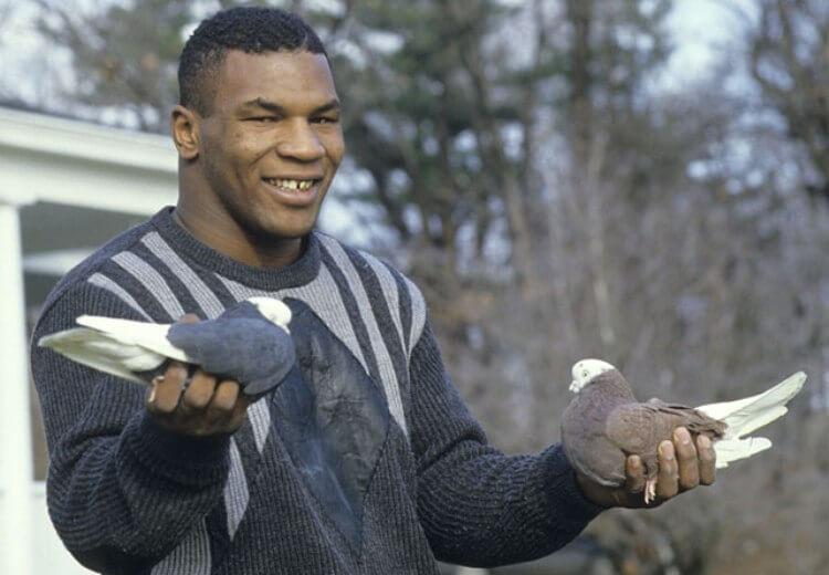 Mike Tyson da giovane con i suoi piccioni